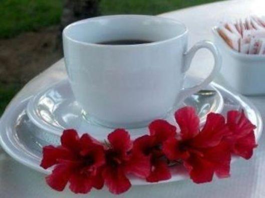cafeaua-de-dimineata-