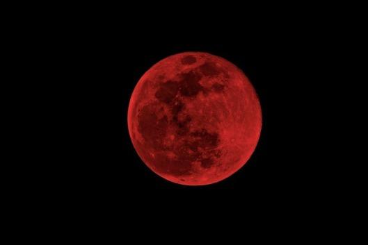 1532421101-luna-sangerie.jpg