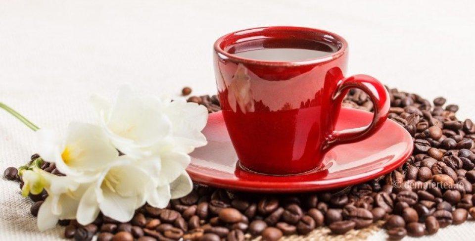 La o cafea cu Erika Mărginean
